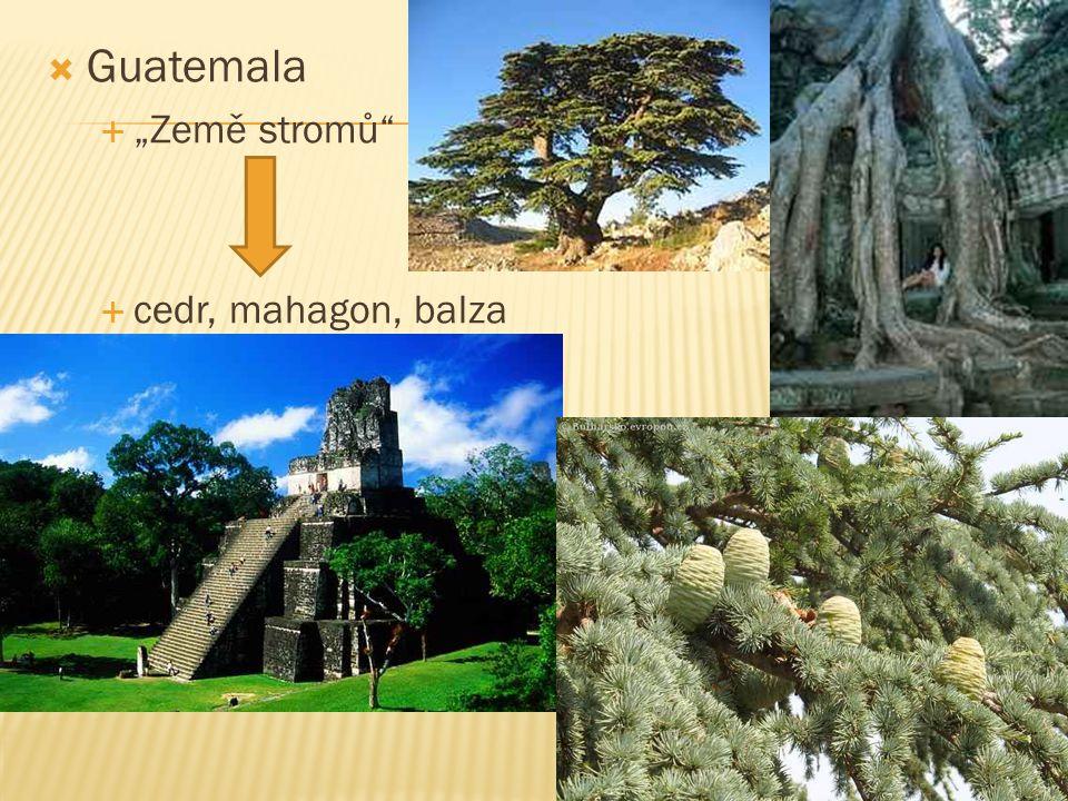 "Guatemala ""Země stromů cedr, mahagon, balza"