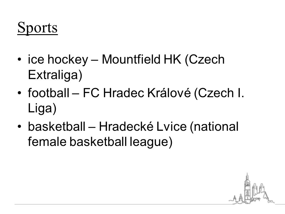 Sports ice hockey – Mountfield HK (Czech Extraliga)