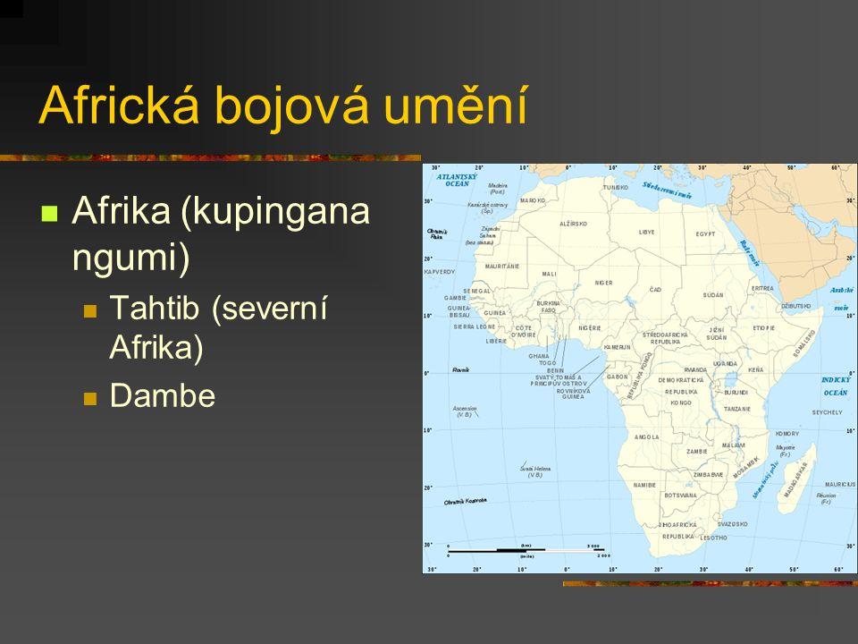 Africká bojová umění Afrika (kupingana ngumi) Tahtib (severní Afrika)
