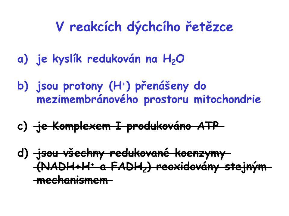 V reakcích dýchcího řetězce
