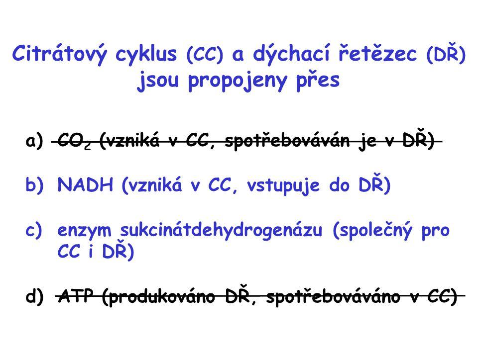 Citrátový cyklus (CC) a dýchací řetězec (DŘ) jsou propojeny přes