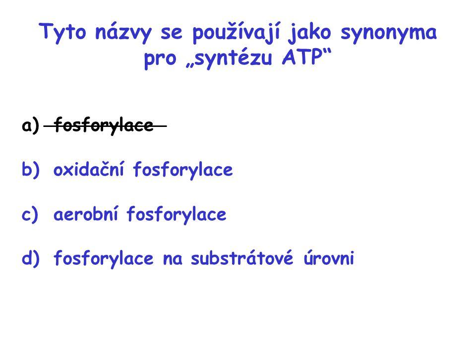 """Tyto názvy se používají jako synonyma pro """"syntézu ATP"""
