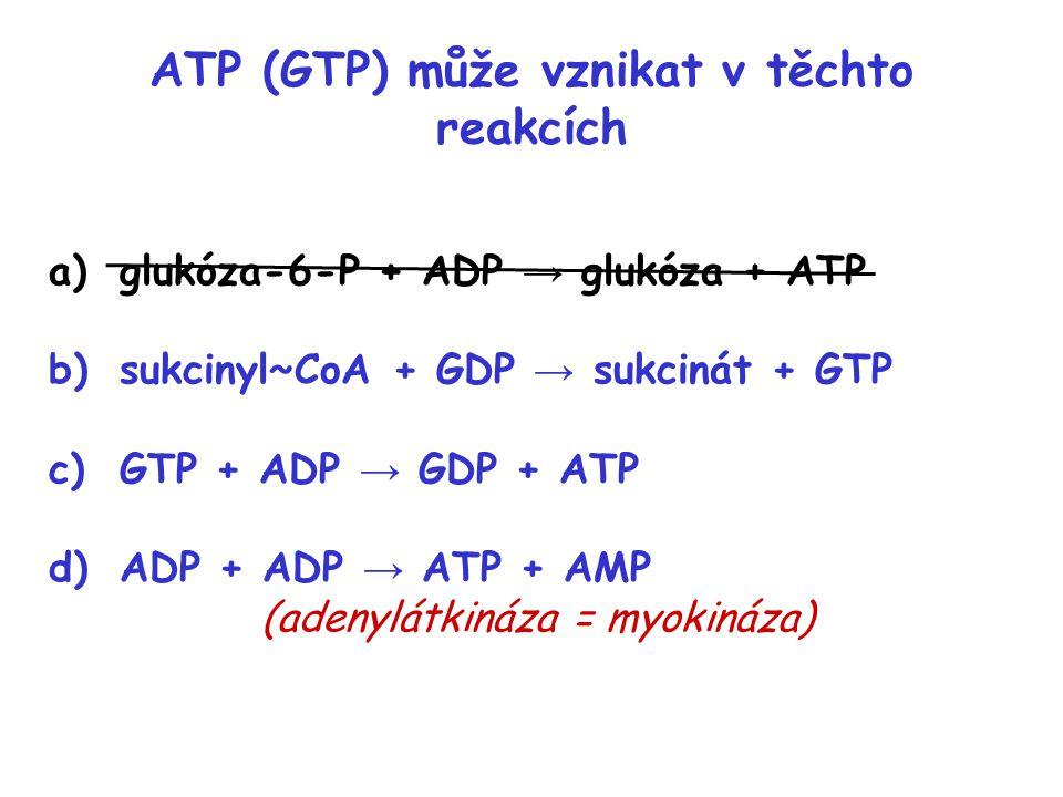 ATP (GTP) může vznikat v těchto reakcích