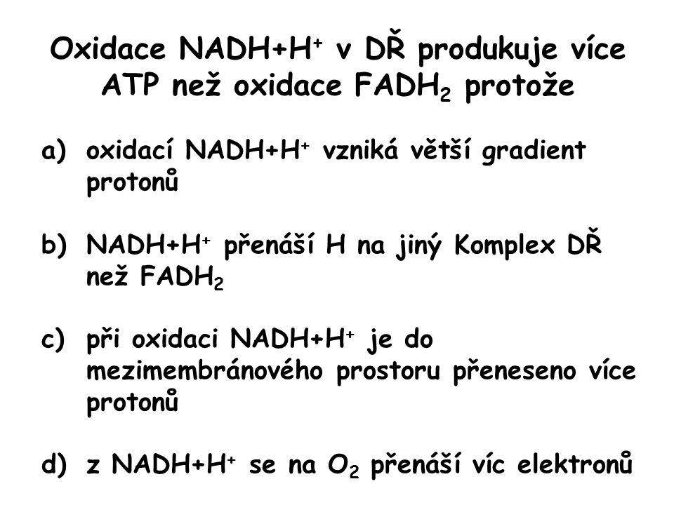 Oxidace NADH+H+ v DŘ produkuje více ATP než oxidace FADH2 protože
