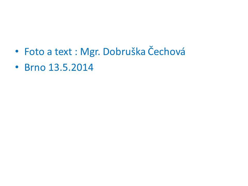 Foto a text : Mgr. Dobruška Čechová