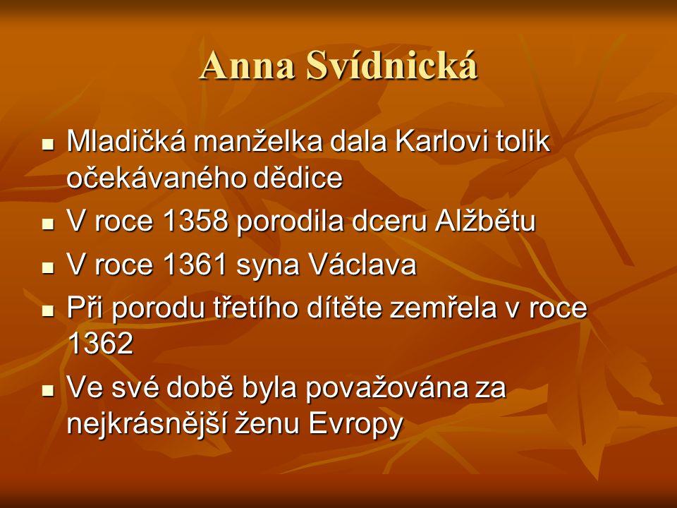 Anna Svídnická Mladičká manželka dala Karlovi tolik očekávaného dědice