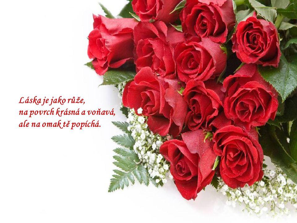Láska je jako růže, na povrch krásná a voňavá, ale na omak tě popíchá.