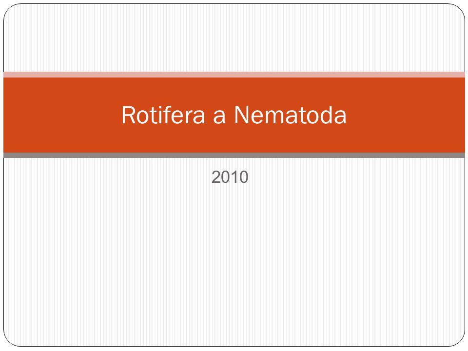 Rotifera a Nematoda 2010