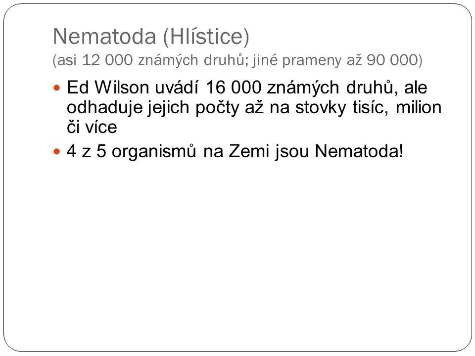 Nematoda (Hlístice) (asi 12 000 známých druhů; jiné prameny až 90 000)