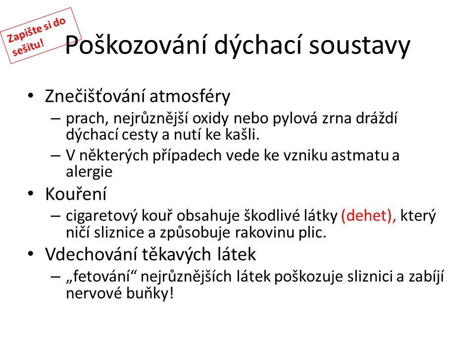Poškozování dýchací soustavy