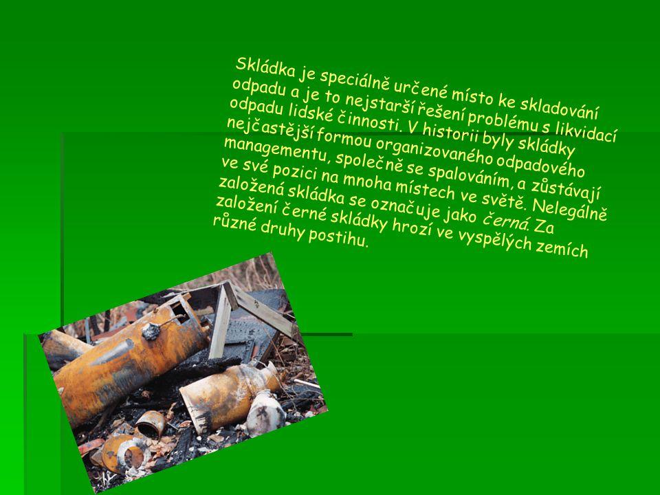 Skládka je speciálně určené místo ke skladování odpadu a je to nejstarší řešení problému s likvidací odpadu lidské činnosti.