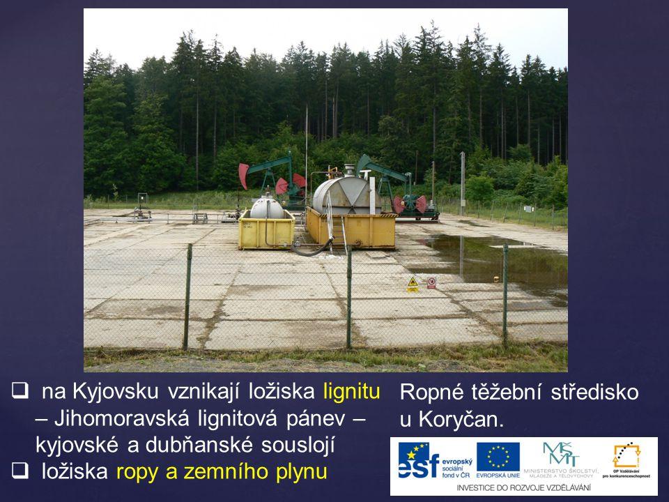 na Kyjovsku vznikají ložiska lignitu – Jihomoravská lignitová pánev – kyjovské a dubňanské souslojí