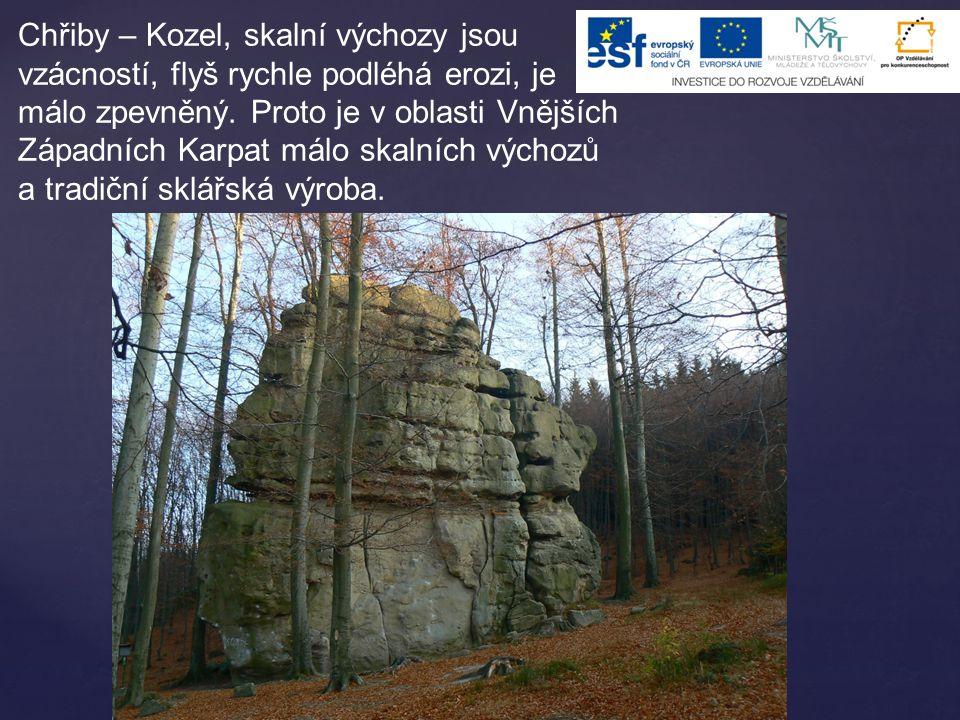 Chřiby – Kozel, skalní výchozy jsou vzácností, flyš rychle podléhá erozi, je málo zpevněný.