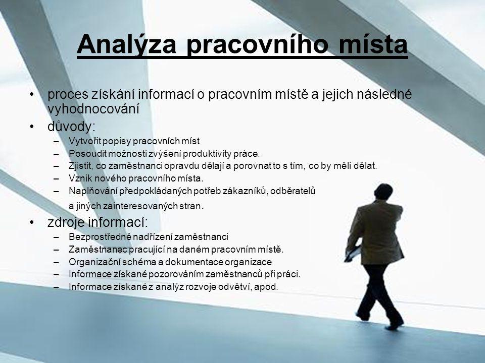 Analýza pracovního místa