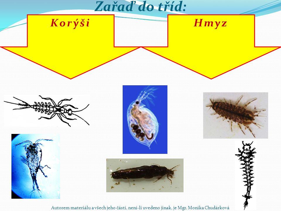 Zařaď do tříd: Korýši Hmyz