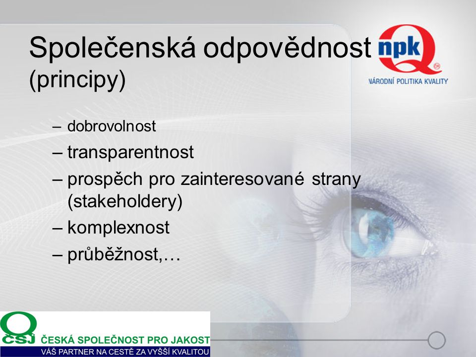 Společenská odpovědnost (principy)