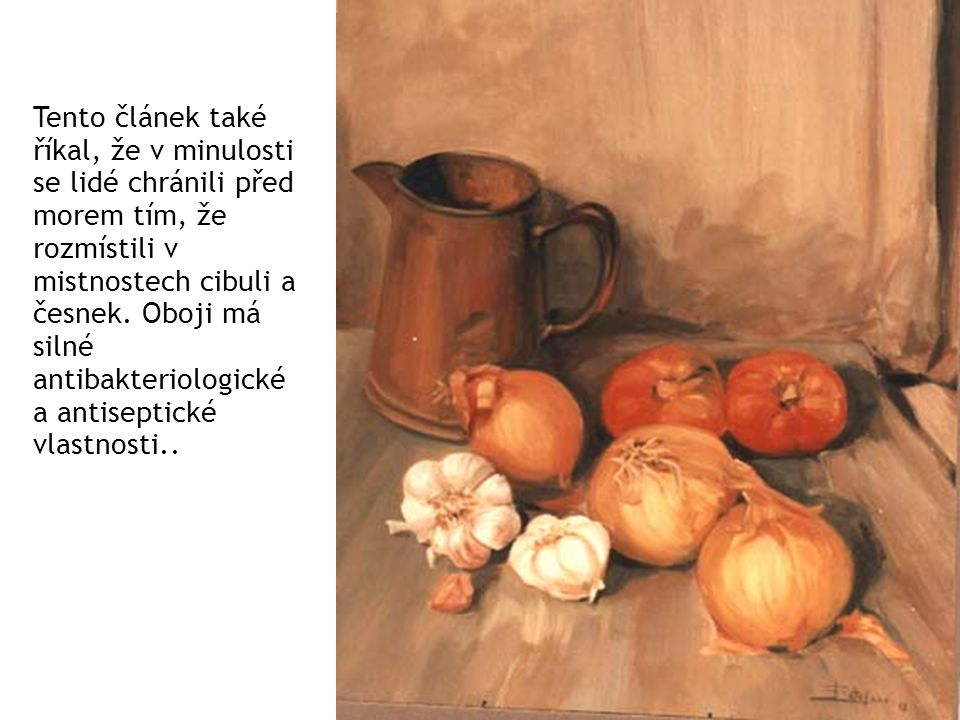 Tento článek také říkal, že v minulosti se lidé chránili před morem tím, že rozmístili v mistnostech cibuli a česnek.
