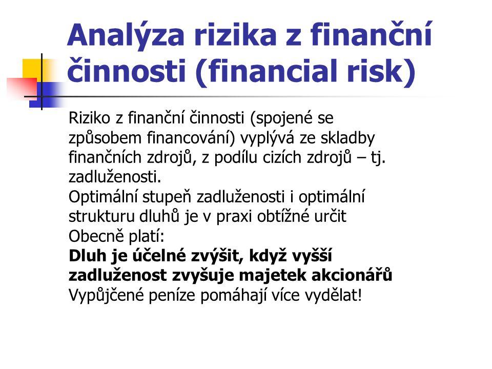 Analýza rizika z finanční činnosti (financial risk)