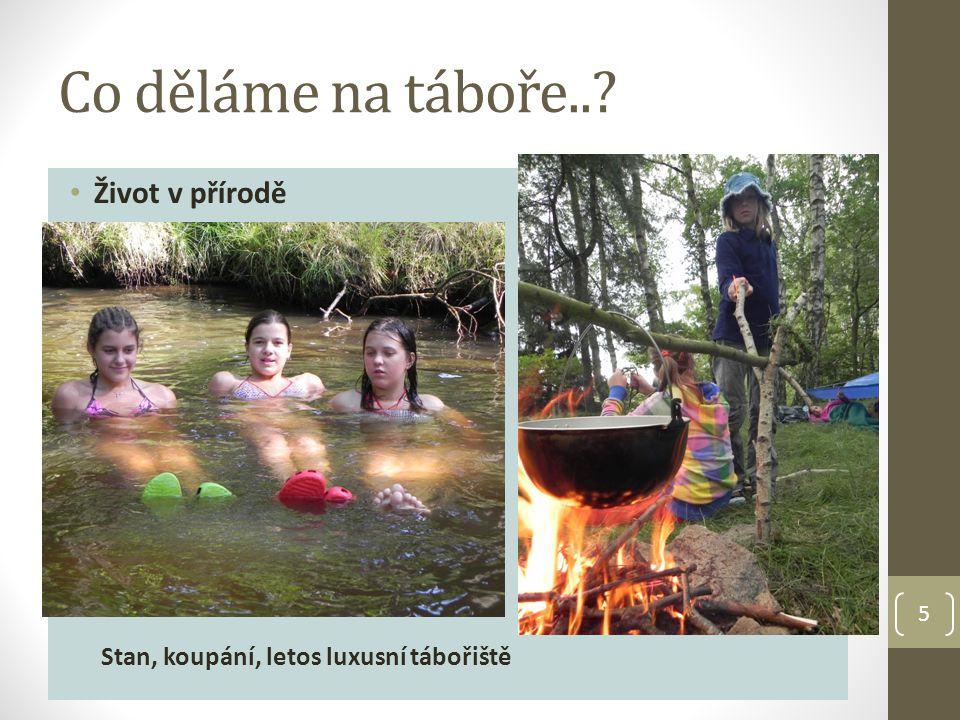 Co děláme na táboře.. Život v přírodě