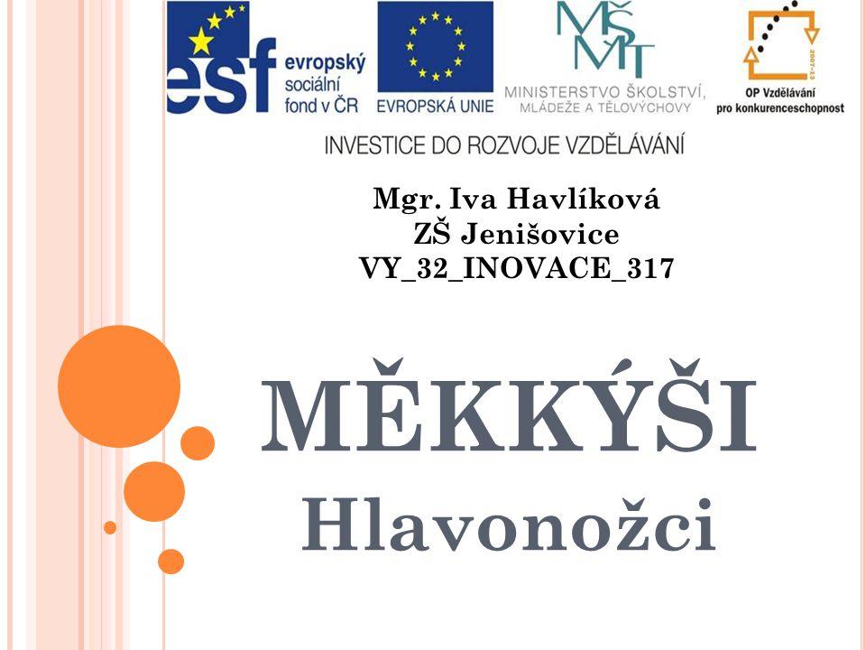 Mgr. Iva Havlíková ZŠ Jenišovice VY_32_INOVACE_317 MĚKKÝŠI Hlavonožci