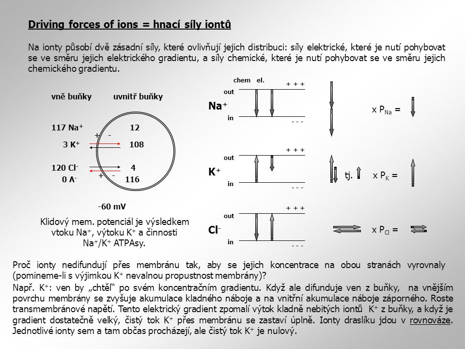 Driving forces of ions = hnací síly iontů