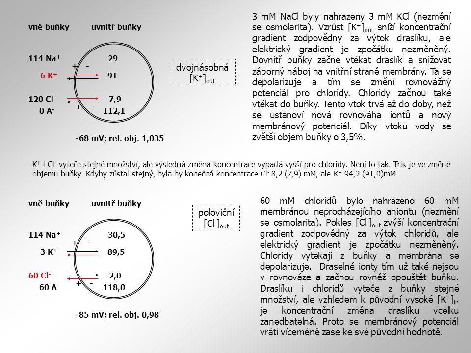 3 mM NaCl byly nahrazeny 3 mM KCl (nezmění se osmolarita)