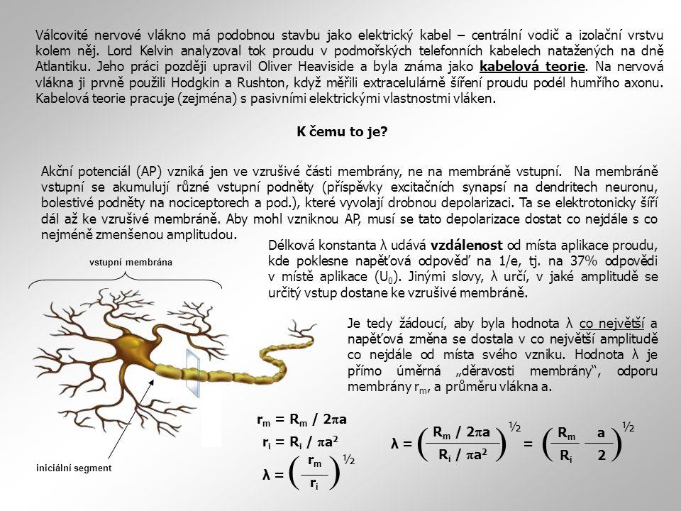 Válcovité nervové vlákno má podobnou stavbu jako elektrický kabel – centrální vodič a izolační vrstvu kolem něj. Lord Kelvin analyzoval tok proudu v podmořských telefonních kabelech natažených na dně Atlantiku. Jeho práci později upravil Oliver Heaviside a byla známa jako kabelová teorie. Na nervová vlákna ji prvně použili Hodgkin a Rushton, když měřili extracelulárně šíření proudu podél humřího axonu. Kabelová teorie pracuje (zejména) s pasivními elektrickými vlastnostmi vláken.
