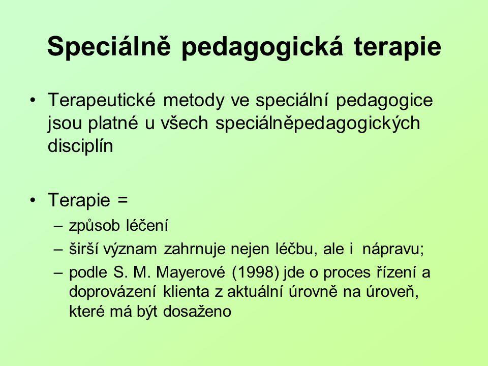 Speciálně pedagogická terapie