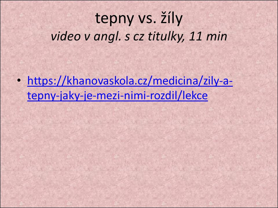 tepny vs. žíly video v angl. s cz titulky, 11 min