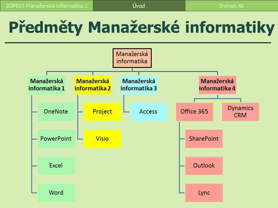 Předměty Manažerské informatiky