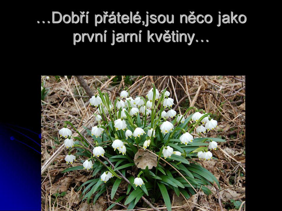 …Dobří přátelé,jsou něco jako první jarní květiny…