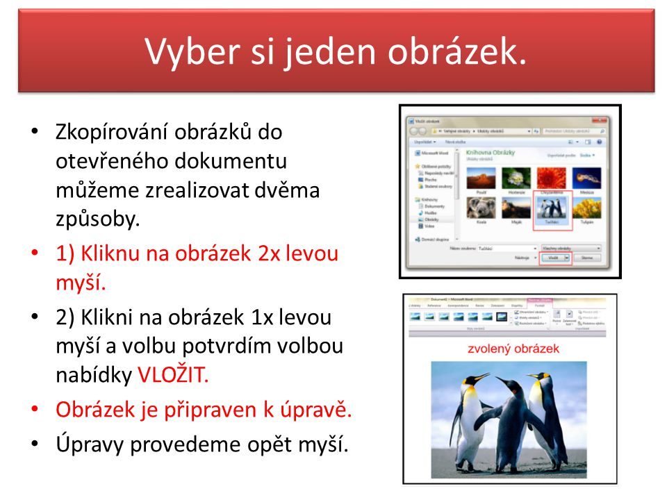 Vyber si jeden obrázek. Zkopírování obrázků do otevřeného dokumentu můžeme zrealizovat dvěma způsoby.