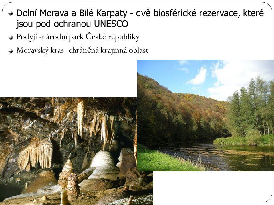 Dolní Morava a Bílé Karpaty - dvě biosférické rezervace, které jsou pod ochranou UNESCO