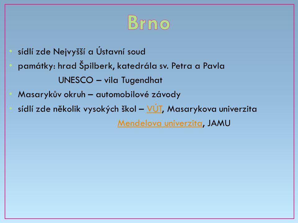 Brno sídlí zde Nejvyšší a Ústavní soud