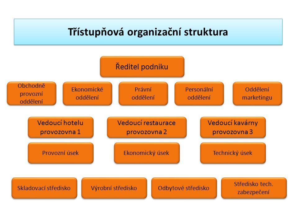 Třístupňová organizační struktura