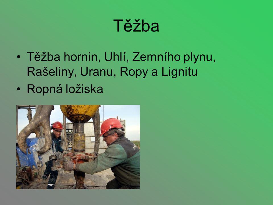 Těžba Těžba hornin, Uhlí, Zemního plynu, Rašeliny, Uranu, Ropy a Lignitu Ropná ložiska