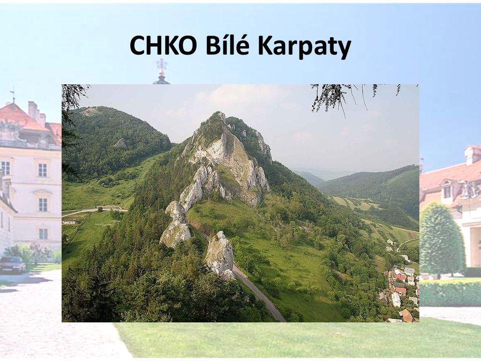 CHKO Bílé Karpaty