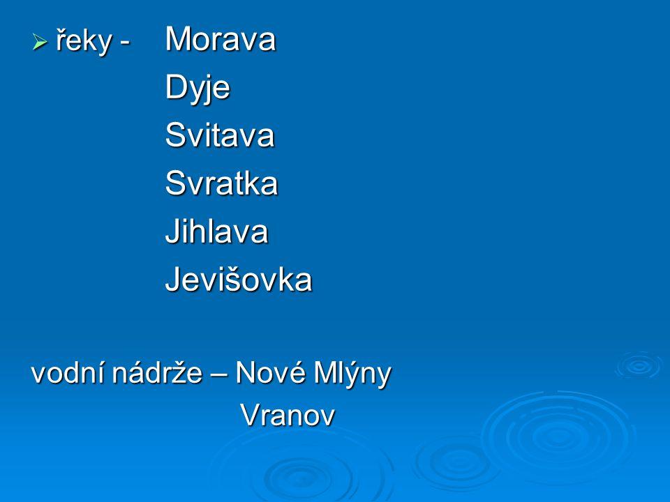 Dyje Svitava Svratka Jihlava Jevišovka řeky - Morava