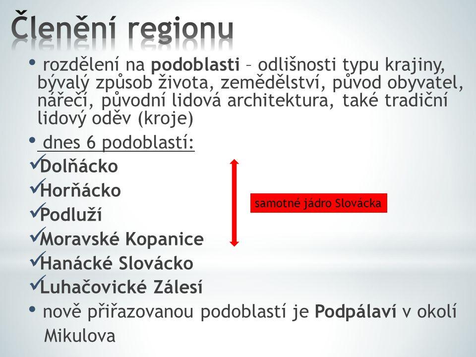 Členění regionu