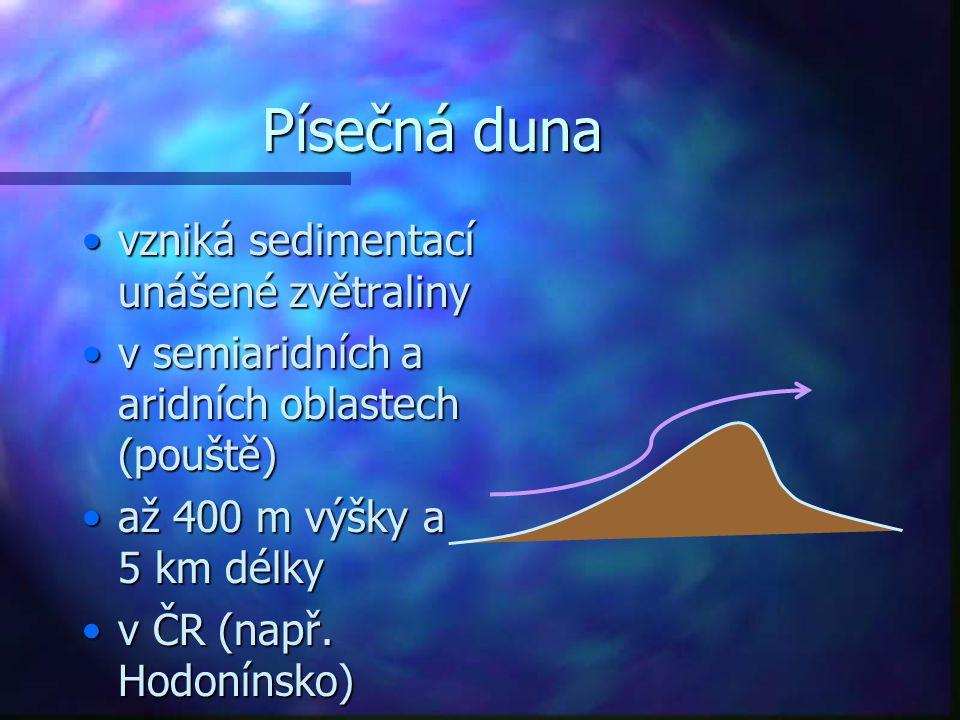 Písečná duna vzniká sedimentací unášené zvětraliny