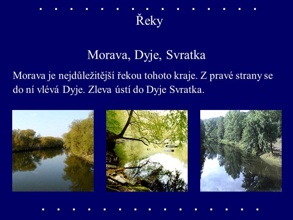 Řeky Morava, Dyje, Svratka