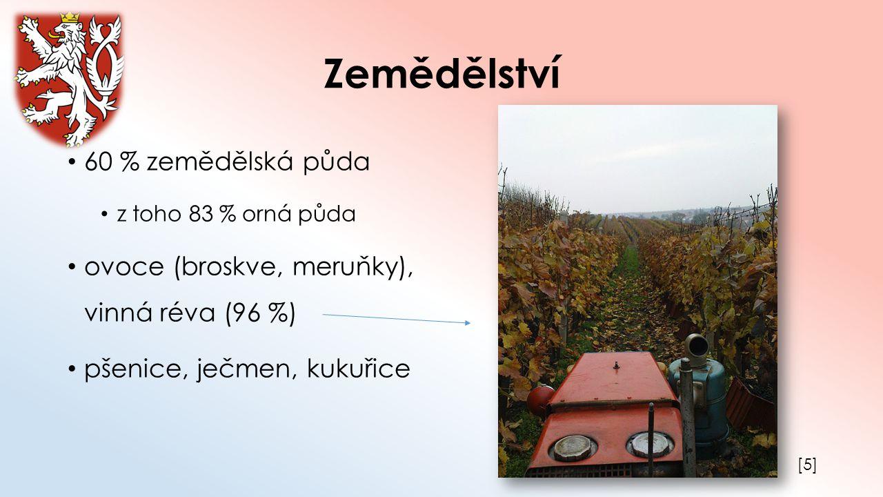 Zemědělství 60 % zemědělská půda