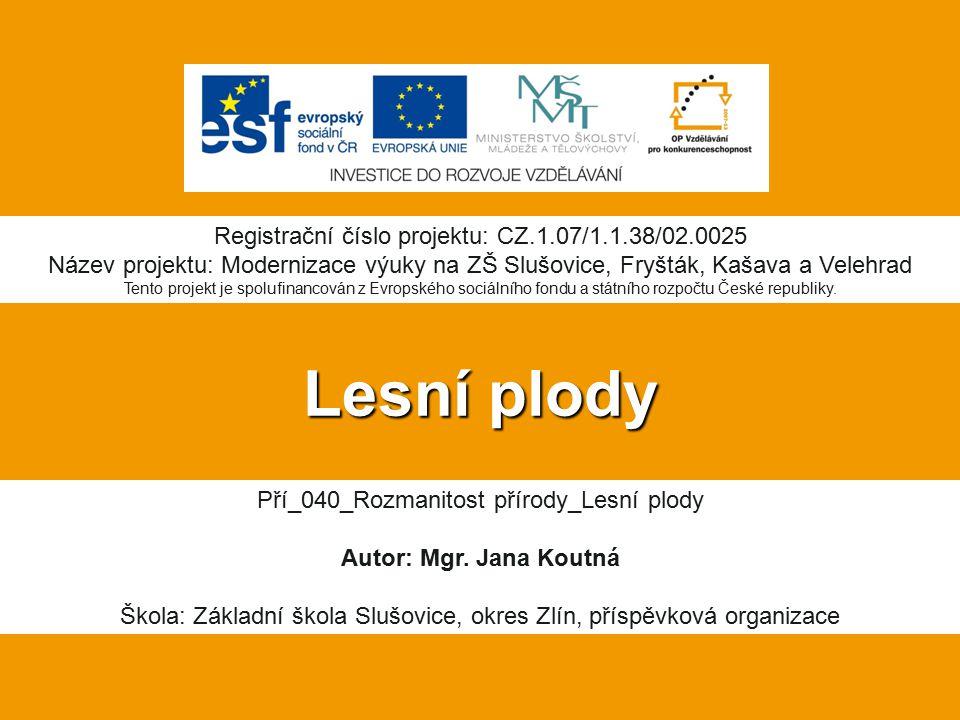 Lesní plody Registrační číslo projektu: CZ.1.07/1.1.38/02.0025