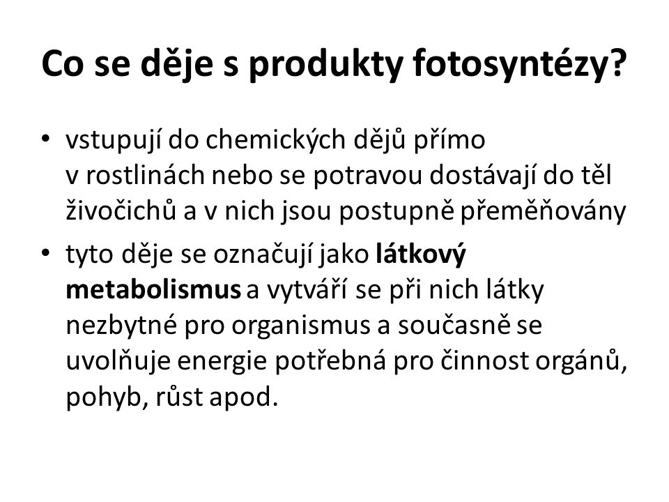 Co se děje s produkty fotosyntézy