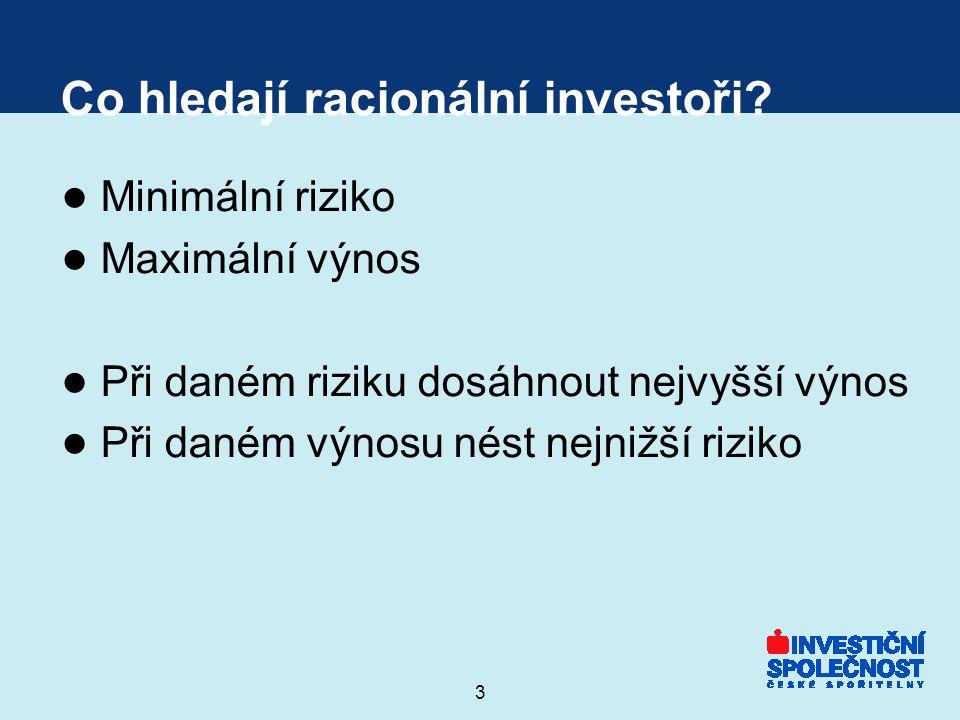 Co hledají racionální investoři