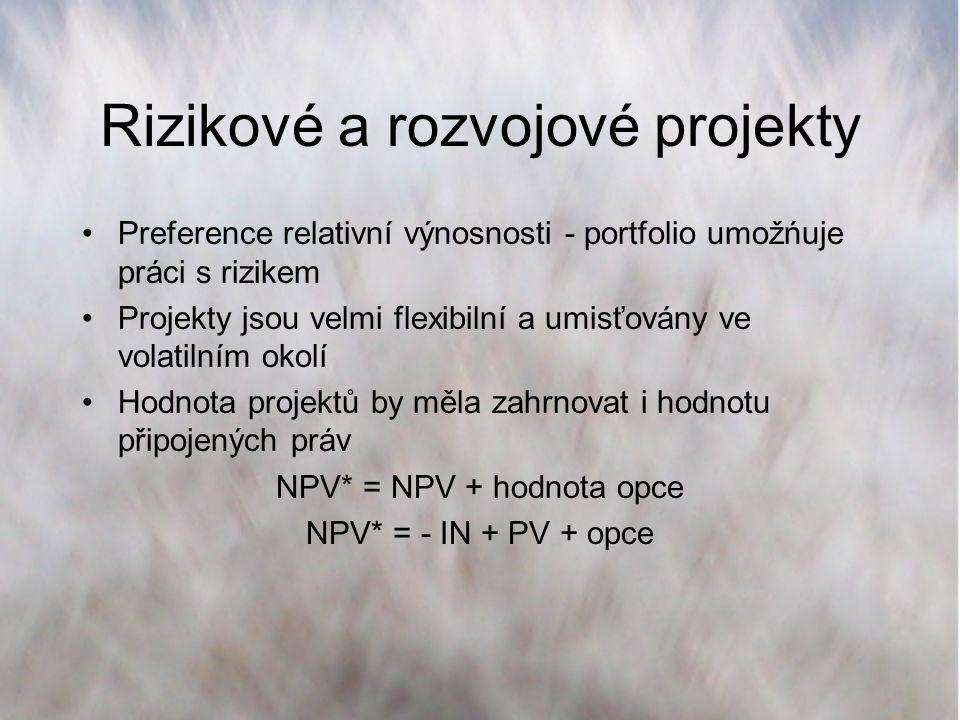 Rizikové a rozvojové projekty