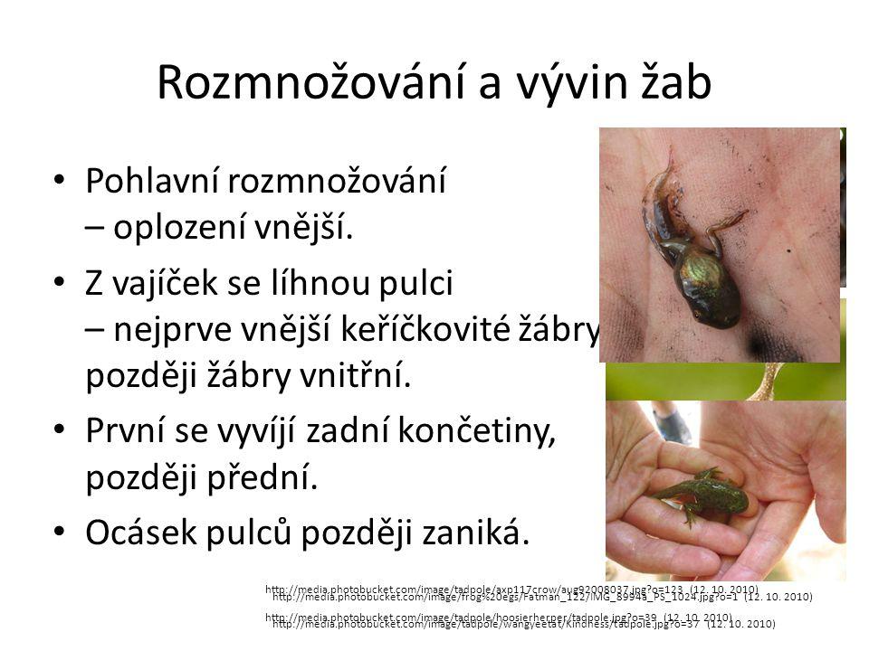Rozmnožování a vývin žab