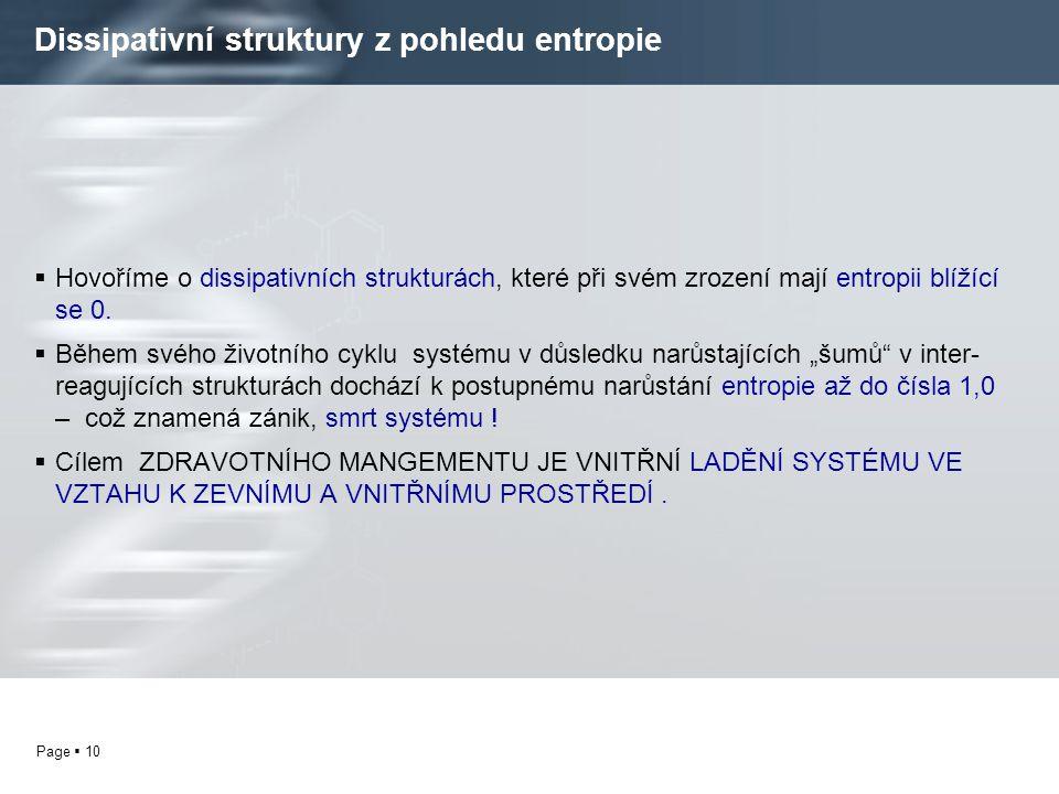 Dissipativní struktury z pohledu entropie