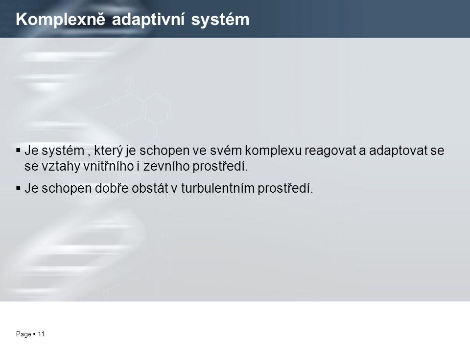 Komplexně adaptivní systém