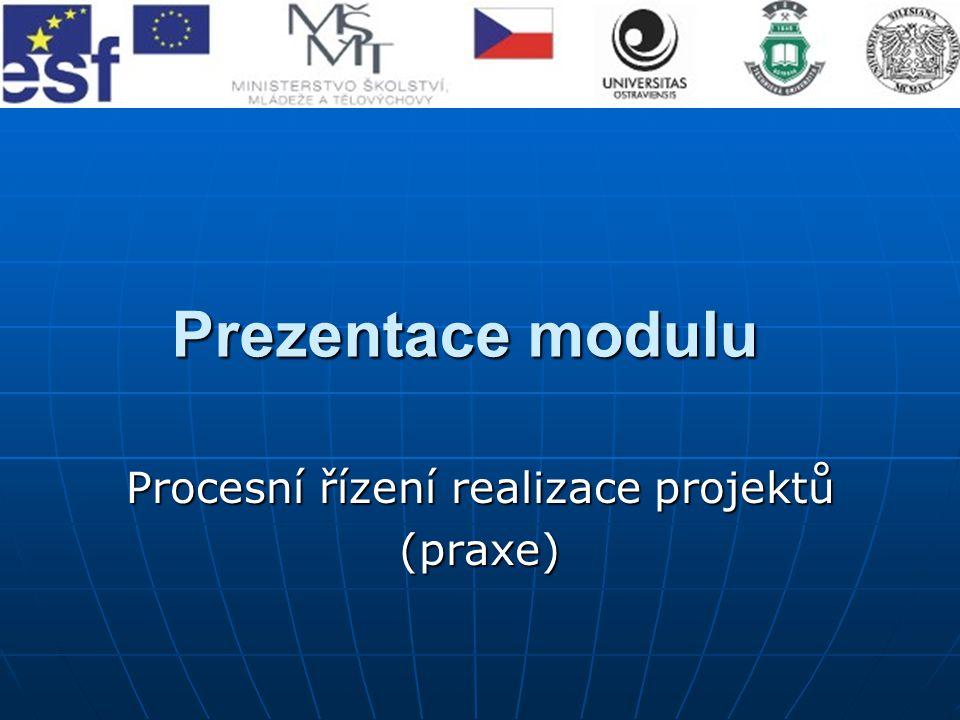 Procesní řízení realizace projektů (praxe)